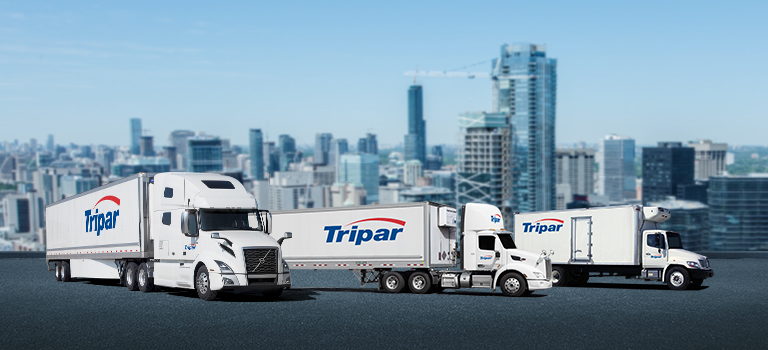 Two transport trucks with trailers and one straight truck, city background